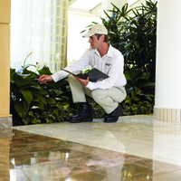 Termite inspection, Pest Control